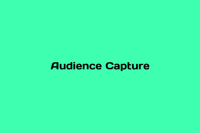 programmatic101-what-is-Audience-Capture