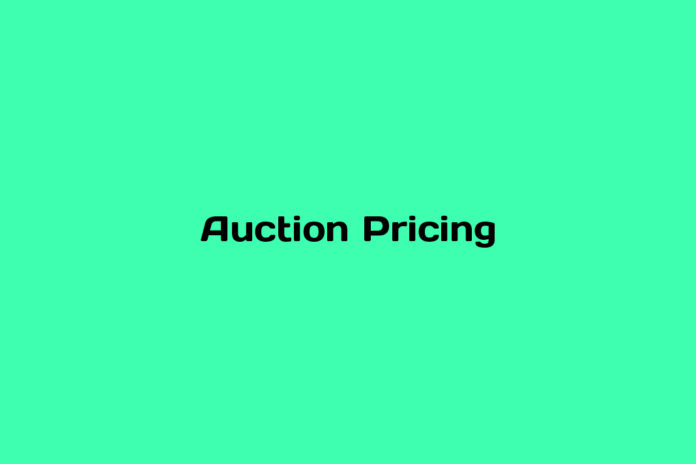 what is auction pricing
