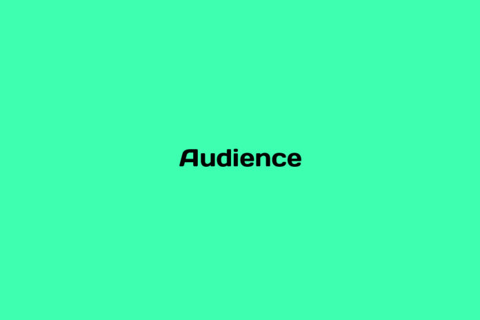 what is an audience