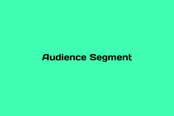 what is an audience segment